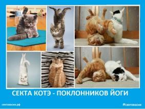 Секта котэ - поклонников йоги - Сектовасия