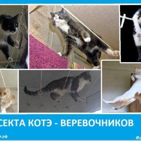 Секта котэ - веревочников - Сектовасия